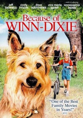 Image Result For Winn Dixie